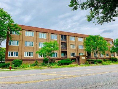 10048 S Pulaski Road UNIT 2E, Oak Lawn, IL 60453 - #: 10482506