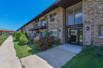 804 E Old Willow Road UNIT 206, Prospect Heights, IL 60070 - #: 10487325