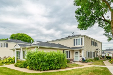 646 E Old Willow Road UNIT 179D, Prospect Heights, IL 60070 - #: 10490717