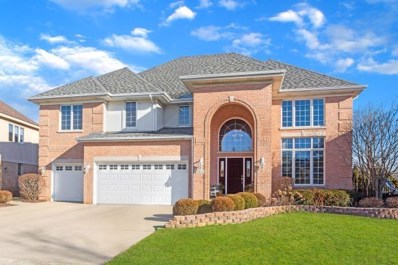 10801 Chaucer Drive, Willow Springs, IL 60480 - #: 10492023
