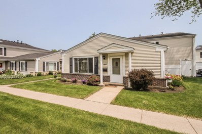 1461 Quaker Lane UNIT 119A, Prospect Heights, IL 60070 - #: 10493836