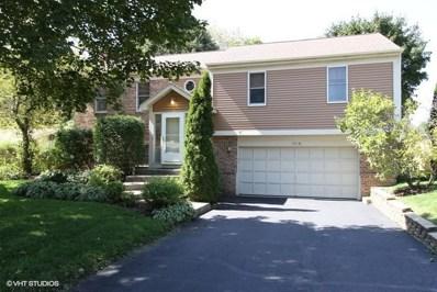 904 S Summit Street, Barrington, IL 60010 - #: 10495750