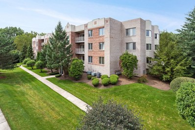 7831 W 157th Street UNIT 304, Orland Park, IL 60462 - #: 10502746