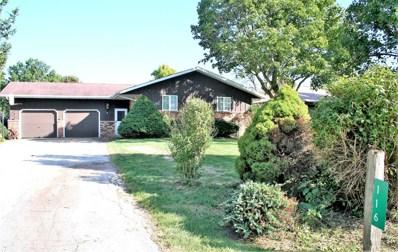 116 Hislop, Cissna Park, IL 60924 - #: 10528398