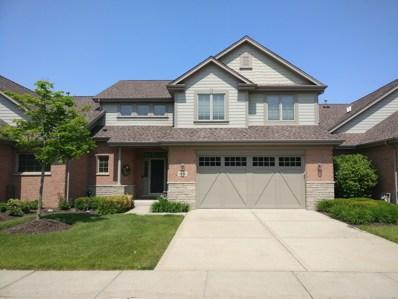 20392 MacKinac Point Drive, Frankfort, IL 60423 - #: 10535527