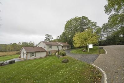 16 W Chippewa Court, Lake Barrington, IL 60010 - #: 10538827