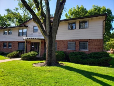 212 Washington Square UNIT A, Elk Grove Village, IL 60007 - #: 10540917