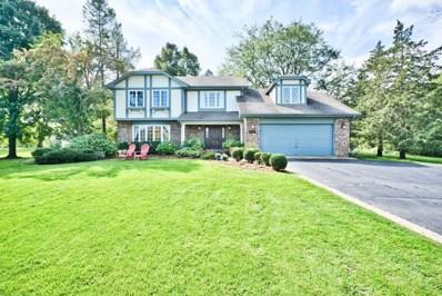 23252 N High Ridge Road, Barrington, IL 60010 - #: 10569237