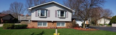 911 S Schoolhouse Road, New Lenox, IL 60451 - #: 10572169