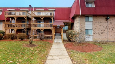 1875 Tall Oaks Drive UNIT 1408, Aurora, IL 60505 - #: 10582352