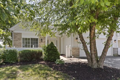 21309 W Crimson Court, Plainfield, IL 60544 - #: 10582864