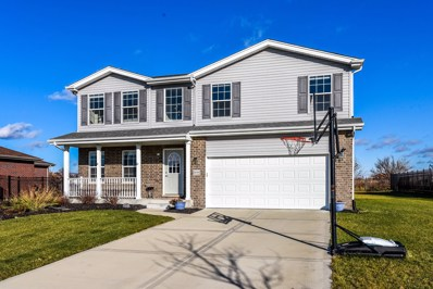 24549 S Clydesdale Drive, Manhattan, IL 60442 - #: 10583239