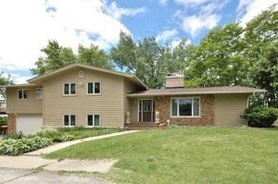 9217 Bard Road, Lakewood, IL 60014 - #: 10586329