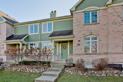 223 Newberry Avenue, Libertyville, IL 60048 - #: 10587447