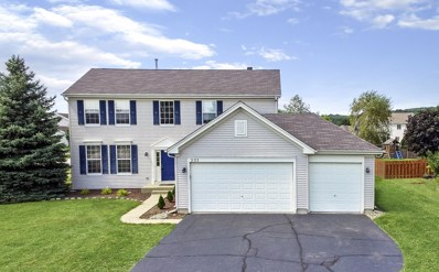 201 Donegal Court, McHenry, IL 60050 - #: 10587588