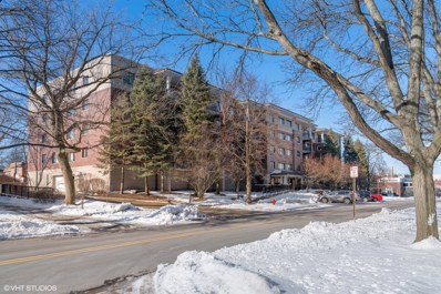 1700 2nd Street UNIT 106, Highland Park, IL 60035 - #: 10616455