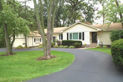 10915 S Oketo Avenue, Worth, IL 60482 - #: 10618435