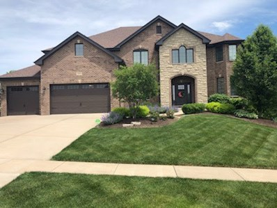 1230 Hickory Creek Drive, New Lenox, IL 60451 - #: 10619801
