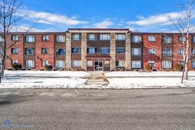 10210 Washington Avenue UNIT 200, Oak Lawn, IL 60453 - #: 10639117