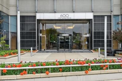 600 N Lake Shore Drive Unit 3611, Chicago, IL 60611 - #: 11080340