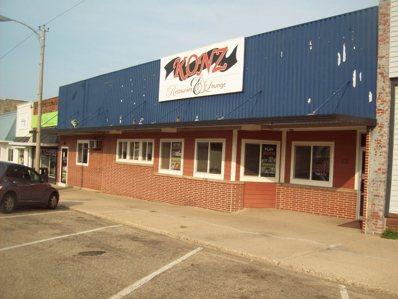 112 S Main Street, Walnut, IL 61376 - #: 11204940