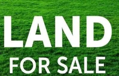 MLS: 11223940