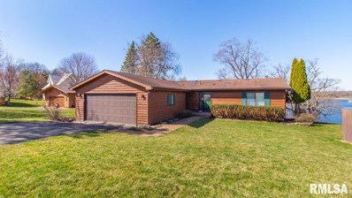 8075 Oak Run Drive North Drive, Dahinda, IL 61428 - #: 1182080