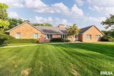 706 W Townes, Peoria, IL 61615 - #: 1198243