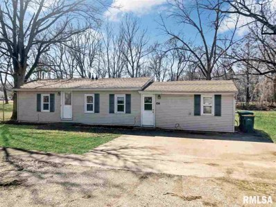 104 Tazewell, Spring Bay, IL 61611 - #: 1198356