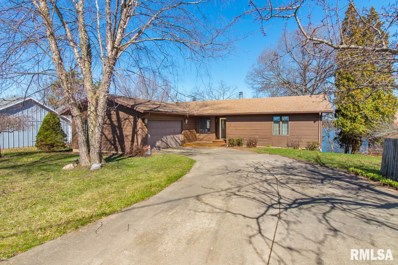 8061 N Oak Run Drive, Dahinda, IL 61428 - #: 1199501