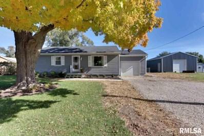 1004 S Oak, Delavan, IL 61734 - #: 1199929