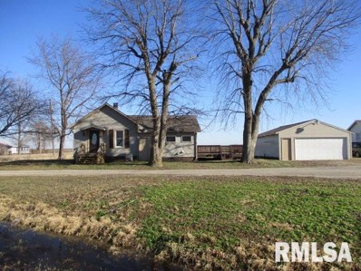 218 Railroad State Rt 89 Stree, La Rose, IL 61541 - #: 1201118