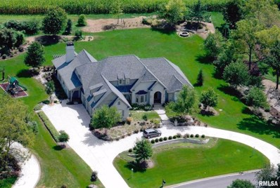 5719 W Nettle Creek Drive, Dunlap, IL 61525 - #: 1204000