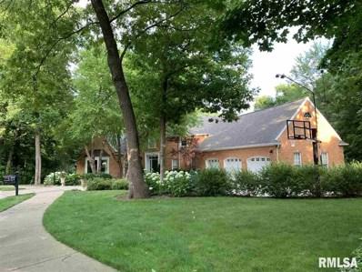 804 W Grand Oak Road, Peoria, IL 61615 - #: 1206753