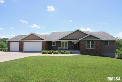 30 Lake Of The Hills None, Orion, IL 61273 - #: 1206921