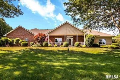 12304 W Downing Place, Brimfield, IL 61517 - #: 1209530