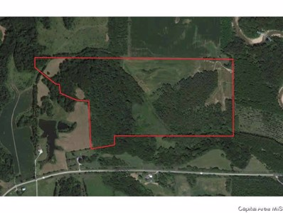 County Road 260 N, Versailles, IL 62378 - #: 1210013