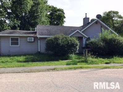 306 Warren Street, Colona, IL 61241 - #: 1211601
