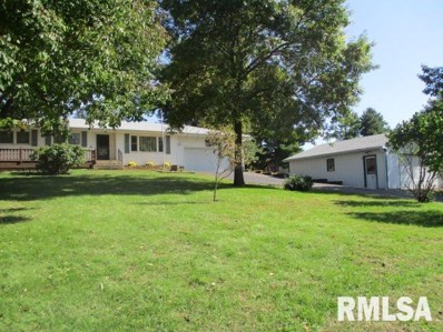 746 Hopewell Road, Lacon, IL 61540 - #: 1216350