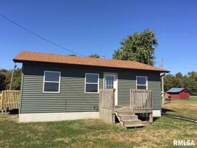 911 SE Fifth Street, Morrisonville, IL 62546 - #: 1217611