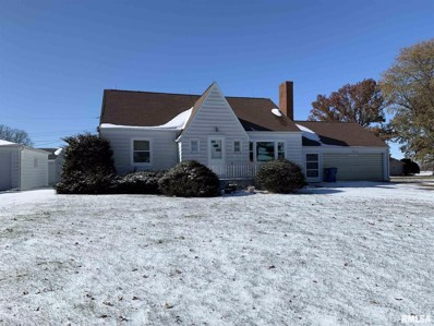309 S Central Street, Mineral, IL 61344 - #: 1219170