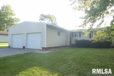 1303 1411th Avenue, Lincoln, IL 62656 - #: 1219643