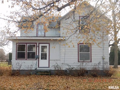 503 SE 4TH Street, Galva, IL 61434 - #: 1219728