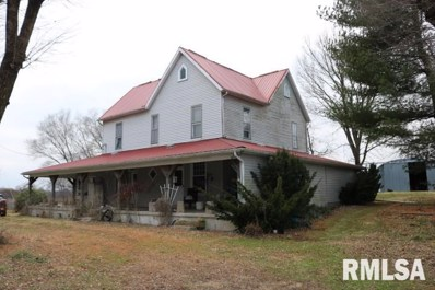 9292 E Fallview Road, Baldwin, IL 62217 - #: 1220954