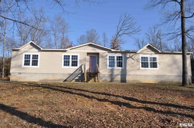 8821 County Road 850 N Road, McLeansboro, IL 62859 - #: 1222834