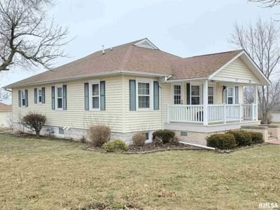 303 E 2ND Street, Mineral, IL 61344 - #: 1228502