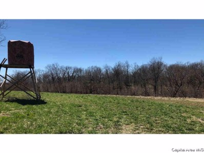 1 County Rd 1200N, Mt Sterling, IL 62353 - #: 1236342