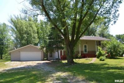 458 S John Wayne Road, Dawson, IL 62520 - #: 1236523