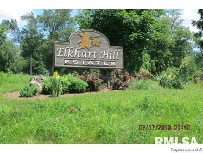 4 Governors Drive, Elkhart, IL 62634 - #: 1239131