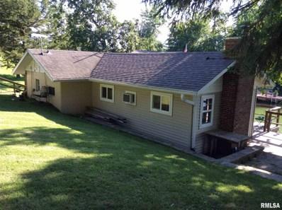 213 Lake Warren Drive, Monmouth, IL 61462 - #: 1240216